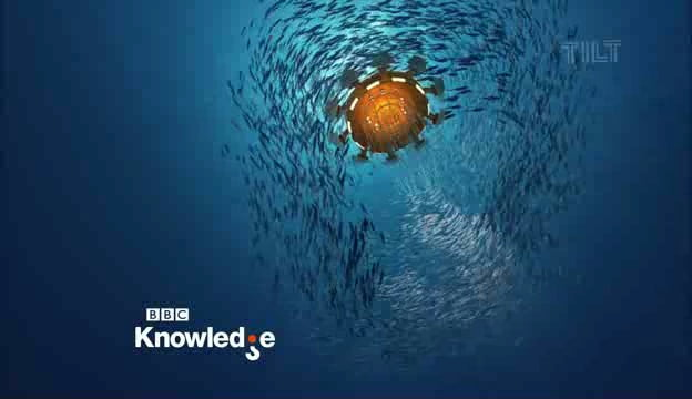 BBC_Knowledge_ident_2011_e