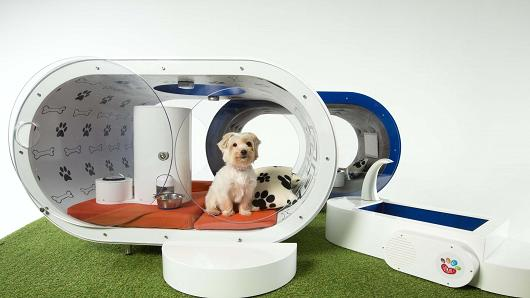 Samsung-Dream-Doghouse