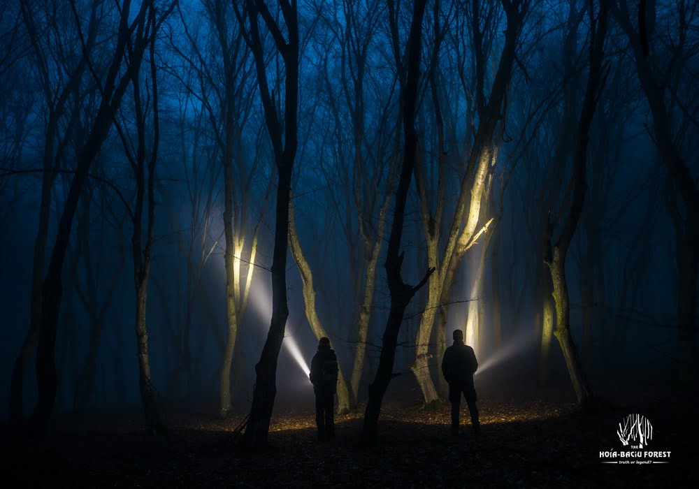 pădurea hoia–baciu Misterele-paranormale-din-Pădurea-Hoia-Baciu-gadgetreport